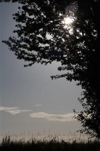 20100621 (4) (Small)